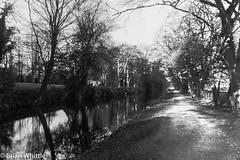 IMGP9327 (Brian H Whittle) Tags: blackwhite leedsliverpoolcanal rufford canal