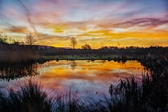 Pool of light (Sundornvic) Tags: hdr sunrise pond water sun sky trees colour light morning shropshire clouds reeds