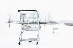the great canadian showdown (rockinmonique) Tags: carts winter snow cold highkey canon canont6s tamron tamron45mm copyright2019moniquewphotography