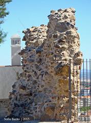 Muralha do Castelo de Castelo Branco (Sofia Barão) Tags: portugal castelo branco beira baixa castle