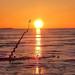 Ice Fishing-Talikaklastus