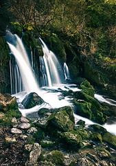 Salto de agua (HDR) (candi...) Tags: hdr ladoudebastareny cascada río agua rocas arboles bosque montaña sonya77ii piedras corriente naturaleza nature airelibre
