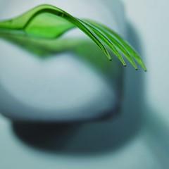 #Green #Kitchtoolia (7 Blue Nights) Tags: green kitchtoolia lookingcloseonfriday smileonsaturday whatisthat macromondays minimalism macro fork rx10