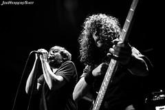 Sonotones (Joe Herrero) Tags: aprobado concierto concert madrid directo live bolo gig rock punk
