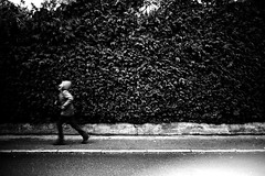 Running (Leica M6) (stefankamert) Tags: running film analog analogue lines noir noiretblanc blackandwhite blackwhite people motionblur leica m6 leicam6 summaron 35mm stefankamert kodak trix hedge