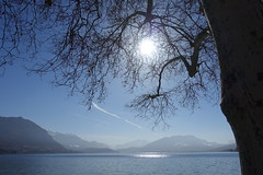 Parc Charles Bosson @ Annecy (*_*) Tags: winter hiver 2019 february europe france hautesavoie 74 annecy savoie park