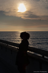 Venice Beach (kengikat40) Tags: venicebeach beach lifesabeach pacificocean venice westside sunset goldensunset lifestyle ocean sand water venicebeachpier nature naturephotography naturephotographer photographer mylifethroughmylens infrontoflouisslens gooutside goexplore california beachlife