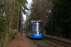 Probefahrt nach Grünwald: T2-Wagen 2701 erreicht die Haltestelle Ludwig-Thoma-Straße (Frederik Buchleitner) Tags: 2701 avenio grünwald munich münchen probefahrt siemens strasenbahn streetcar twagen t2 tram trambahn