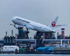 MAK-7201 (oga_mak) Tags: makogawauchi ogamak 東京都 日本 jp 500mm eos canoneos eos1dxmarkii canon canonglobal myeosphoto airport aircraft airplane aviation aviationphotography igairplaneclub boeing b763 boeing767 airways japanairlines hanedaairport hikoukiclub キヤノン 羽田空港 飛行機撮り隊 飛行機大好き 飛行機写真 飛行機のある風景 飛行機倶楽部 飛行機 写真好きな人と繋がりたい カメラ好きな人と繋がりたい
