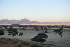 NAMIBIA (gabrielebettelli56) Tags: africa namibia landscape trees mountains nikon travel viaggi