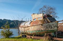 The Sadness of Old Boats (marvhimmel) Tags: abandoned general oldboat oregon hwy126 raisa florence