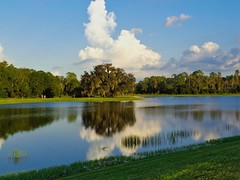 Reflect (The Vintage Lens) Tags: pond lake reflection nature still water clouds blue sky green grass peaceful