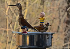 Charlie Brown and Lucy in a Pot With Two Wooden Birds (ricko) Tags: pot birds wooden charliebrown lucy toys werehere 85365 2019