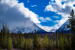 Mountain Weather (djking) Tags: nationalpark mountains jasper athabascafalls sky trees clouds