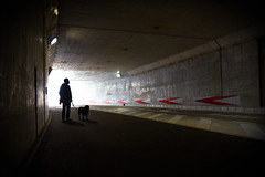 Light at the end of the tunnel (reiko_robinami) Tags: street streetphotography silhouette shadow dog oneperson outdoors tunnel yokohama japan light