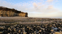 Lavernock Point (keppet) Tags: strata lavernockpoint lavernock point beach wales glamorgan coast limestone dinosaurslivehere marconi winter lowsun