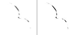 Ultima Thule Crescent, variant (sjrankin) Tags: ulitmathulecrescent2719 10february2019 edited nasa newhorizons grayscale ultimathule asteroid comet montage