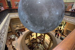 The Museum of the Moon at the Harris, Preston (Tony Worrall) Tags: themuseumofthemoon harris harrismuseum inside interior sculpture statue art arty artist globe ball preston lancs lancashire city welovethenorth nw northwest north update place location uk england visit area attraction open stream tour country item greatbritain britain english british gb capture buy stock sell sale outside outdoors caught photo shoot shot picture captured ilobsterit instragram photosofpreston