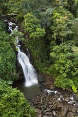 Lower Nanue Falls_27A8835 (Alfred J. Lockwood Photography) Tags: alfredjlockwood nature landscape waterfalls lowernanuefalls tropicalforest bigisland hawaii morning overcast winter