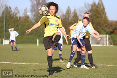 Coventry Sphinx Ladies 0 Sutton Coldfield Town Ladies 1 (MHuckfieldPhotography) Tags: sctladies suttoncoldfieldtownladies suttoncoldfieldtownladiesfc coventrysphinxladies coventrysphinxladiesfc coventrysphinxfc sphinxclub coventry womensfootball womenssport women womeninsport womeninfootball sportphotography sport sportsphotography sportswomen sportswoman sportlife football footballphotography footballplayers footballers footballpitch footballmatch footballgame footy footballlife actionphotography canon canonphotography canon6dmkii 6dmkii dslr dslrphotography mhuckfieldphotography
