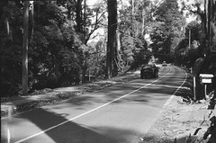 Mount Dandenong Tourist Road (photo 3) (Matthew Paul Argall) Tags: beirettevsn 35mmfilm blackandwhite blackandwhitefilm kentmere100 100isofilm road street mountdandenongtouristroad