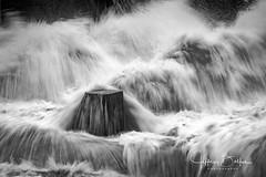 Vasona Dam-9014263 (Jeffrey Balfus (thx for 4 Million views)) Tags: sonyalpha sonya9mirrorless sonyilce9 fullframe 90mmf28macrogossprimelensmacrosel90m28g rapids water blackandwhite bw monochrome sonyalphadslr