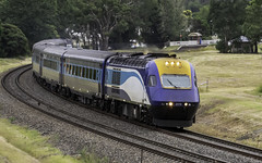 """XPT XP2016 named """"City of Cootamundra"""" as ST23 Sydney to Melbourne 08-03-2019 (Paul Leader - Paulie's Time Off Photography) Tags: bargonsw dmu passengertrain st23sydneytomelbourne trainlink xptxp2016cityofcootamundra xpt xp2016 olympus olympusem10 paulleader publictransport transport transportation train travel tourist rail railway railroad passenger commute commuter st23 nsw newsouthwales australia railpage:class=140 railpage:loco=xp2016 rpaunswxpclass rpaunswxpclassxp2016"""