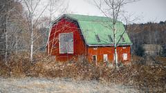 BigRedBarn (Ke7dbx) Tags: kitsap kitsapcounty county clearcreek red redbarn barn architecture architecturephotography photo myphoto photography bangor nsbbangor nsb basekitsap parks farm farming farms sony sonya7 a7 fullframe mirrorless
