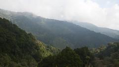 Costa Rica - Cloud forest (Rez Mole) Tags: costa rica cloud forest