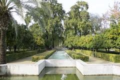20190331-Unelmatrippi-Parque-Maria-Luisa-DSC0663 (Unelmatrippi) Tags: sevilla seville espanja spain parquedemaríaluisa maríaluisapark europe eurooppa