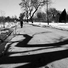 Faire le plein d'oxygène en marchant... (woltarise) Tags: gr ricoh exercice marche paysage glace froid passant jardin botanique montréal