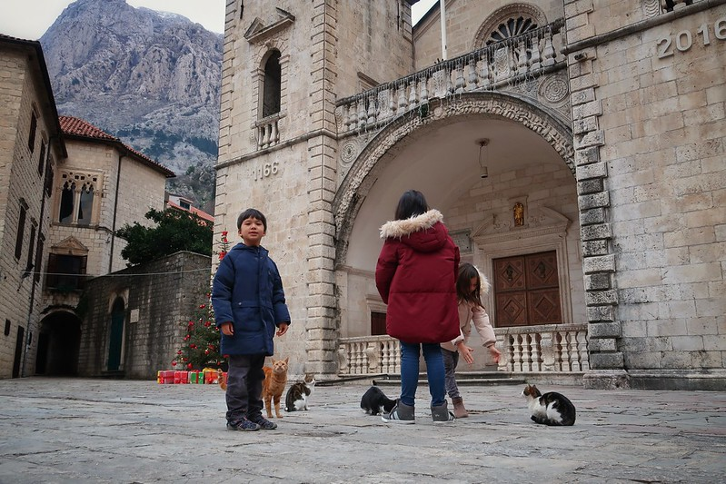 Old city of Kotor, Montenegro blog