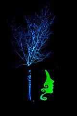 Grugapark Essen (Richter.V) Tags: grugapark gruga parkleuchten park botanischergarten baum gesicht kopf beleuchtung illumination nacht farben bunt muster