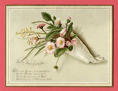 Glückwunschkarte mit Blumenstrauß (altpapiersammler) Tags: alt old vintage glückwunschkarte greeting flower floral blume bouquet straus grus gruskarte vers karte card