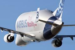Airbus A300B4-608ST - F-GSTC - XFW - 27.02.2019(8) (Matthias Schichta) Tags: hamburgfinkenwerder xfw edhi planespotting flugzeug flugzeugbilder airbus airbustransportinternational a300600st beluga fgstc