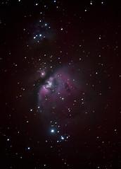Nebulosa Orione (Stefano Pascucci) Tags: astronomy sky colors nebulosity star space mto1000 stefanopascucci