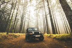DSC_9141 (IILife) Tags: jeep wrangler offroad 4x4 tenerife tree forest vintage car cars icon beautiful nature landscape travel trip explore explorer tourist tourism vacation holiday black big tyre green road path high light nikon d5 manfrotto auto automotive