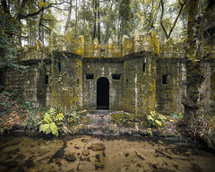 Sanctuary (Midnight - Digital) Tags: forest abandoned castle medieval lost forgotten trees atmosphere