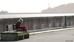 Girl in the wind (patrick_milan) Tags: brest minou girl fille woman femme banc mer sea street