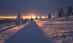 Morning Delight (MrBlackSun) Tags: lapland antarctic finland colours riisitunturi national sunrise morningstar