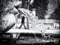 Nemausus (davcsl) Tags: nemausus antiquité art architecture blackwhite bw biancoenero blackandwhitephotosonly callejerastrassenfotografie davcsl france gard monochrome monotones noiretblanc noiretblancblackwhite nb nimes nîmes occitanie people photographiederue photoderue southoffrance streetphotography street urban urbanstreet urbanfreeflow placedassas fontaine eau