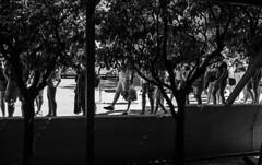 Piernas (Nebelkuss) Tags: creta crete heraklion heraclion cnossos blancoynegro blackandwhite bw callejeras street gente people islasgriegas greekislands grecia greece fujixpro1 fujinonxf23f14