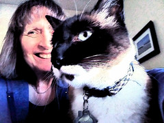 Me & Izzy Sumi-e (Donna's View) Tags: cellphone phonepic cat selfie siamesecat photoshop photoshopapp sumieapp
