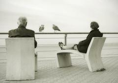 Oostende+