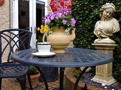 P1080583 (KENS PHOTOS2010) Tags: flowers gardens gardening