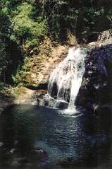 Upper section of Fountain Falls, 1993 (NettyA) Tags: 1993 australia canungracreekeast fountainfalls lamingtonnationalpark middleridgetraverse qld queensland bushwalk bushwalking scannedprint scenicrim