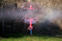 En plein dans le mille . (mousse.annick) Tags: explosion peinture rouge bleue sony macro proxi bokeh gouttes