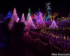 915A6325 (mikekos333) Tags: 2018 december christmas christmaslights coastalmainebotanicalgardens boothbay