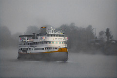 Foggy Morning. (Omygodtom) Tags: uncruise boat ship river fog oregon outside usgs people nikon70300mmvrlens d7100 digital season nikkor coth5 scene senery setting cruise
