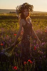 (viktoriakuzmenko) Tags: wreath girl fashion beautiful flowers field summer dryad sunset model meadow silhouette photo dress sundress poppy fashionphoto